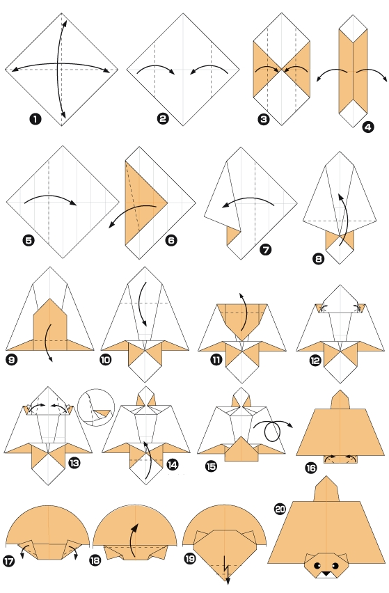 Origami of flying squirrel