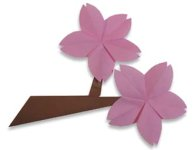 Origami of cherry blossom, picture of menu