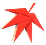 Origami of maple leaf, picture of menu