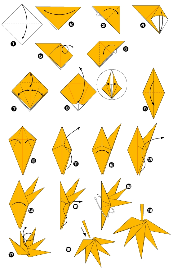 Origami of maple leaf