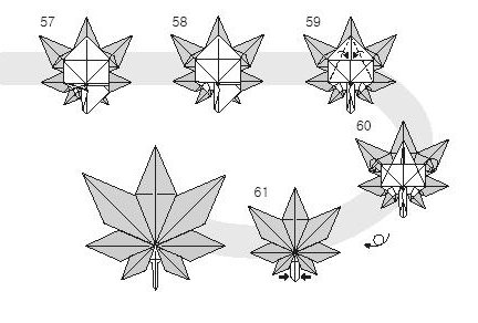 Diagram of origami of small leaves of maple, stage 5