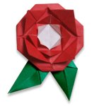 Origami of rose, picture of menu
